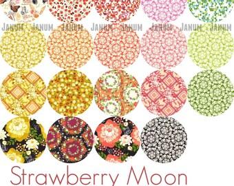 Strawberry Moon collection Fat quarter bundle by Sandi Henderson for Michael Miller Fabrics - 19 fat quarters