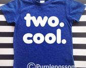 Two Cool kids birthday shirt hipster kids birthday shirt 2nd birthday shirt two cool birthday shirt 2nd birthday boy or girl birthday shirt