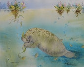 PRINT manatee 8 x 10 bowman open edition seacow portrait Crystal River Gourmet water hyacinth Florida