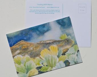 Post Card Alligator baby rides on mommas nose bowman postcard Florida swamp scene green water lettuce wildlife nature portrait
