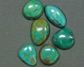 Turquoise cabochons lot Kingman and assorted mines,  B-12