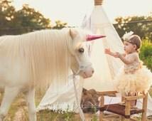 Feather tutu, custom tutu, feather dress, dress up, feathers, indian princess, photo prop, princess, cake smash, outfit, headdress, handmade