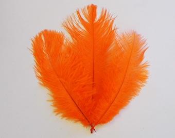 Orange Ostrich Feathers