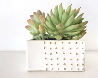 Spiked modern Terrarium garden home decor Handmade ceramic succulent planter in white and 22k gold accents