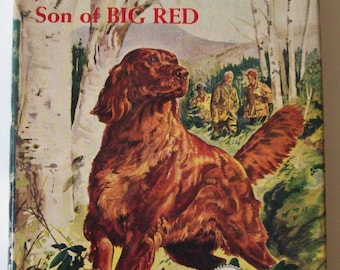 Vintage 1951 Irish Red Son of Big Red by Jim Kjelgaard - Hardcover Book w/ Dust Jacket - dog