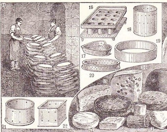 Antique French Print Book Page 1910s Engraved iIlustration Cheese Cheesemaking Fromage