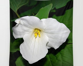 Trillium wall tapestry, spring wildflower photograph, white flower, floral home decor, living room, bedroom wall art