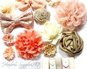 Headband Kit - Baby Shower Station Kit - Peach, Ivory, Beige, Coral - Glitzy - Baby Headbands, DIY Infant Headband - Hairbow Supplies, Etc.