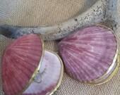 Vintage Inspired Polished Shell Pill Box/ Coin Purse/ Pink Scallop Shell/ Beach Wedding/ Seashell Trinkets/ Jewel Box/ FREE SHIPPING