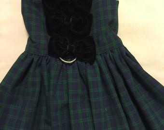 Little School Girl dog dress, medium dog dress,  tiny dog dress, x small dog dress, wedding dog dress, fall dog dress, winter dog dress