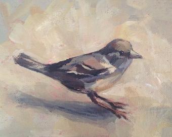 Sparrow  - 5x7 inch Original Acrylic Painting