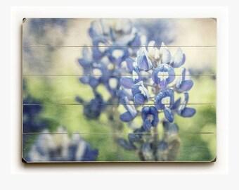 Wood Sign: Texas Bluebonnets Wood Plank, Spring Art, Texas Decor, Pastel Blue Flower Photography.
