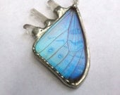 Real Butterfly / Butterfly Jewelry / Crystal Necklace / Crystal Jewelry / Butterfly Wing Necklace