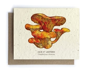 Jack O' Lantern Mushroom Greeting Card - Plantable Seed Paper - Blank Inside
