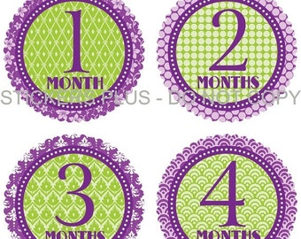 SALE Baby Month Stickers Plus FREE Gift Lime Green Purple Baby Shower PRECUT Bodysuit Stickers Baby Monthly Age Stickers Photo Prop