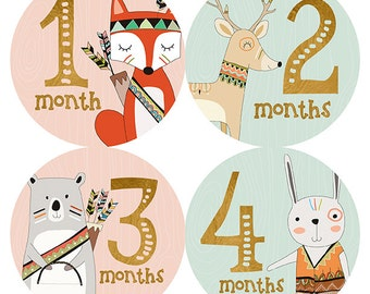 FREE GIFT, Woodland Monthly Baby Stickers Girl, Baby Month Stickers Girl, Tribal, Fox, Bear, Deer, Pink, Mint, Gold, Baby Photo Prop