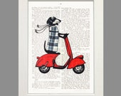 Dachshund on Moped Red Vespa Art Dictionary Art Print Poster England Doxie Art Illustration Wall Decor new 1