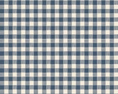 Blue Plaid from Riley Blake's High Adventure Collection