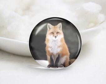 Handmade Round Fox Photo Glass Cabochons (P3578)