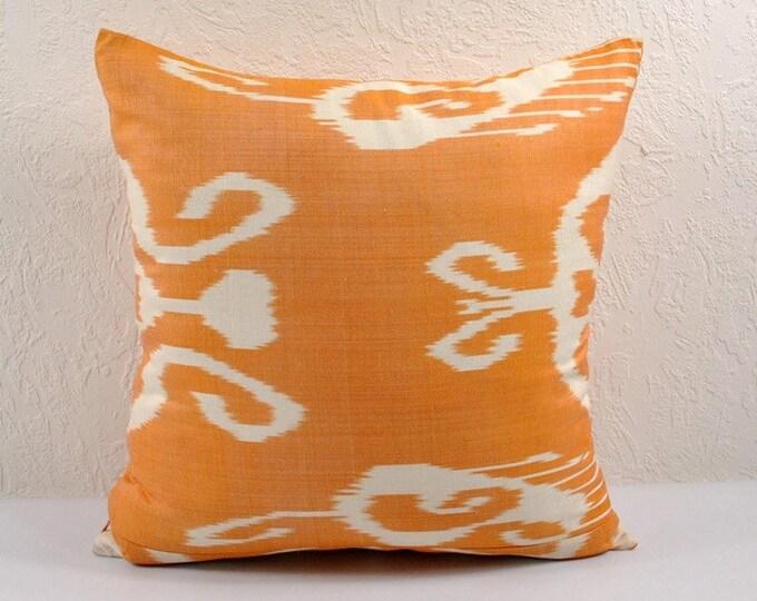 Ikat Pillow, Hand Woven Ikat Pillow Cover npi215-10, Ikat throw pillows, Designer pillows, Decorative pillows, Accent pillows