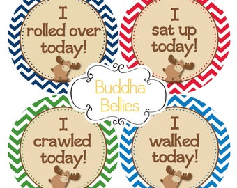 Milestone Stickers Set of 8 - Moose Baby - Moose Baby Stickers - Monthly Baby Sticker Add on Set - Baby's Firsts - Baby Accomplishments
