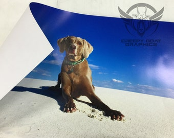 Custom Digital Printed Poster, photos and graphics printed on poster paper