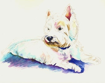 Westie west highland terrier painting - original watercolor