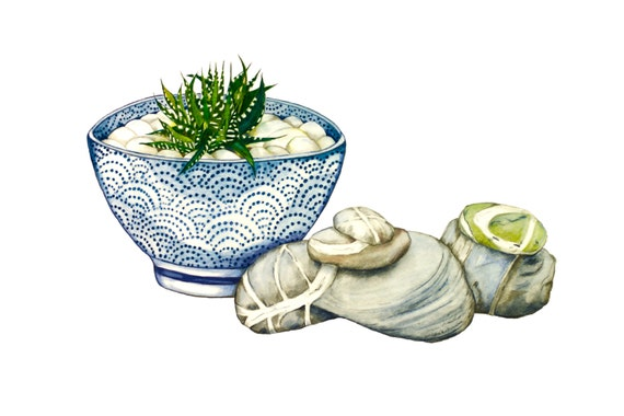 LIMITED EDITION, Still Life with Blue Ceramic Bowl, Zebra Cactus, Irish Killiney Beach Stones, Zen Still Life, Ireland Nature, Ireland Art