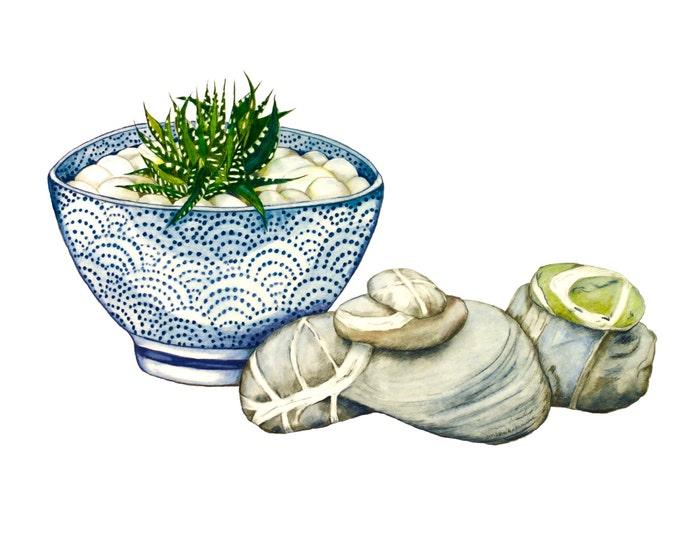 LIMITED EDITION, Still Life with Blue Ceramic Bowl, Zebra Cactus, Irish Killiney Beach Stones, Zen Still Life, Ireland Nature, Ireland Art