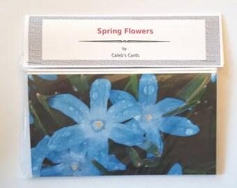 Card Set, Spring Flowers, Blank Cards