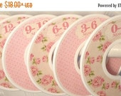 SALE Custom Baby Closet Dividers Clothes Organizers Vintage Pink Tan Shabby Elegance Floral Roses Flowers CD410 Baby Girl Shower Gift Nurser