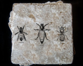 Vintage bee design coaster set. **Ask for free gift wrapping and have them sent directly to the recipient!**
