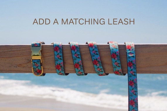 Add a Matching Modern Dog Leash