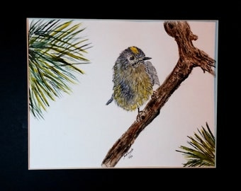 The Tiny Goldcrest, King of the Birds