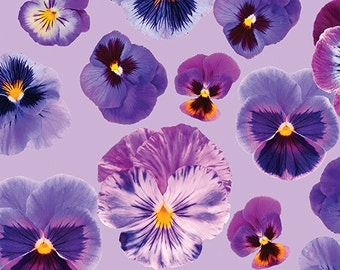Fat Quarter Pansy Persuasian Lilac Flowers 100% Cotton Quilting Fabric