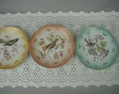 Vintage Decorative Plates with Birds, Mitterteich, Bavaria Germany, Fruit Plates with Gold Overlay, Pastel Colors