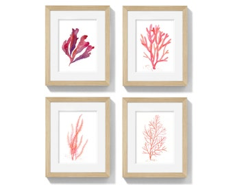 Watercolor Coral and Seaweed. Set of 4 Four Botanical Prints in coral red and orange. Nautical Wall Art, Sea Coral Giclee print