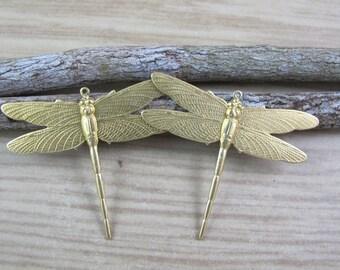 Brass Dragonfies