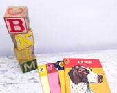 ON SALE Set of Four Mini Quiz Me Books- Dogs, Flags, Indians, Birds