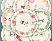12 months - name - Calendar - 2.5 inch circles - set of 12 - digital collage sheet - pocket mirrors, tags, scrapbooking, cupcake toppers