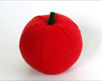 Apple Eco Felt Food
