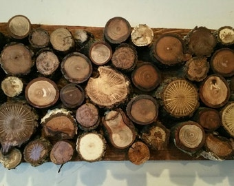Wood Slice / Tree Branch Art
