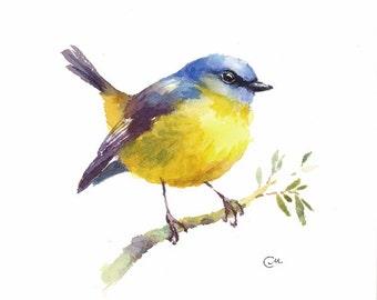 Watercolor Bird Yellow Robin - Original Watercolor Painting 7 4/5 x 7 4/5 inches