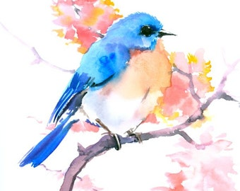 Eastern Bluebird and Pink Flowers
