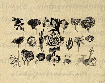 Digital Image Flower Design Element Printable Collage Sheet Emblem Graphic Ornament Download Vintage Clip Art HQ 300dpi No.361
