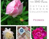 Peony Inspired Basket - The Cottage Garden Collection - Made to Order