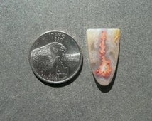 Awesome Regency Rose Plume Agate Cabochon from Oregon  gypl9