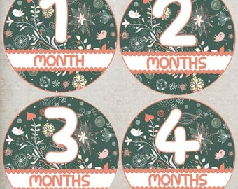 Floral Baby Month Stickers Girl, Month to Month Stickers, Baby Age Stickers, Bodysuit Stickers, Flowers