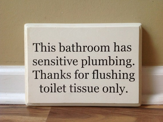 This Bathroom Has Sensitive Plumbing Septic System Rules