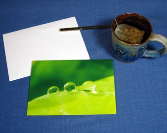 "Greeting Card ""Crossing"" from The Poetry of Nature collection, Water Drop Card, nature photography, colorful art cards, cards with quote"